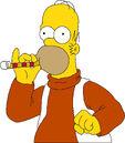 Homer -8.jpg