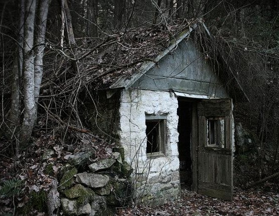 The house deep in the woods creepypasta wiki - The house in the woods ...