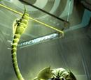 Kron Stone (Tierra-928)