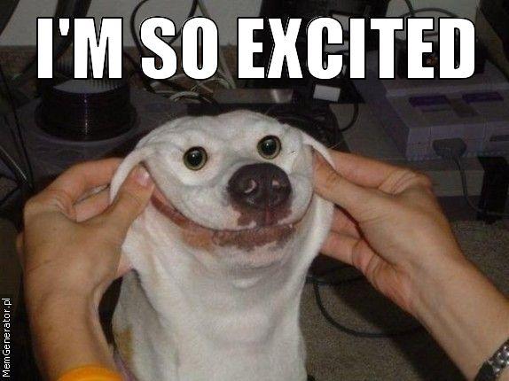 I'm_so_excited_(dog_face).jpeg