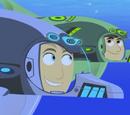 Bottlenose Dolphin Power