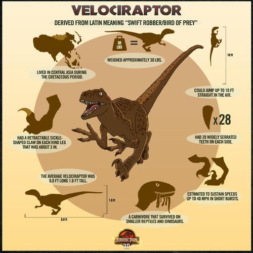 Image - 500x500 raptor poster.jpg - Jurassic Park wiki - Wikia
