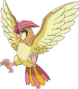 017Pidgeotto AG anime.png