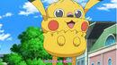 Inkay dressed as Pikachu.jpg
