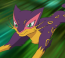 Team Plasma's Liepard (anime)