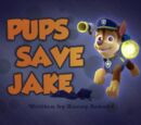 Pups Save Jake/Images