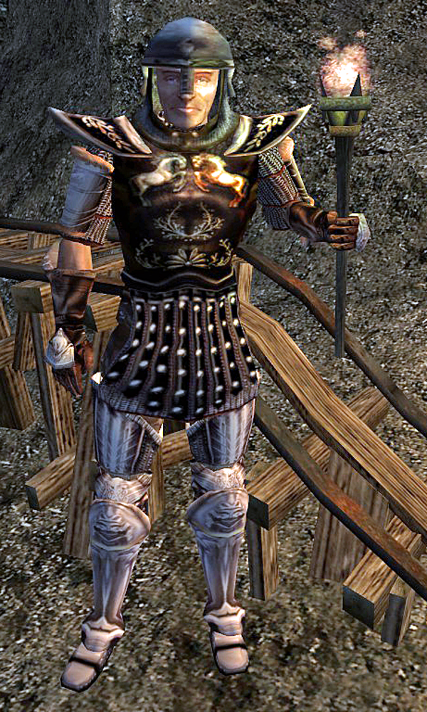 Guard Morrowind Imperial Guard Morrowind