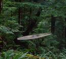 Silver Surfer's Surfboard