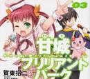 Amagi Brilliant Park Light Novel Volume 3