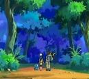 Bewilder Forest