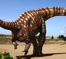 Aardonyx