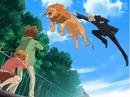 Ryohei golpea a un león.png