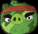 Hambo (Świnia)