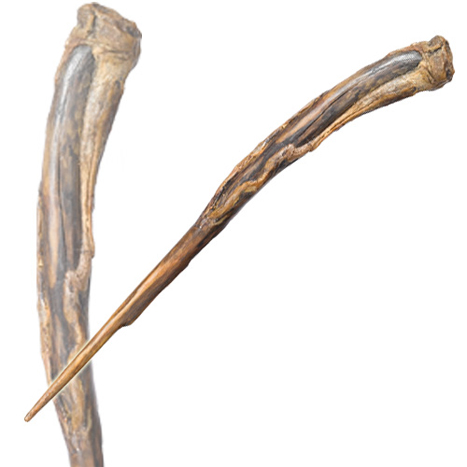 Blackthorn wand harry potter wiki wikia