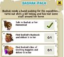 Bashak-Pack