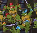 1987 Turtles/Gallery