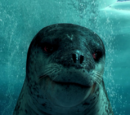 Leopard Seal (character)