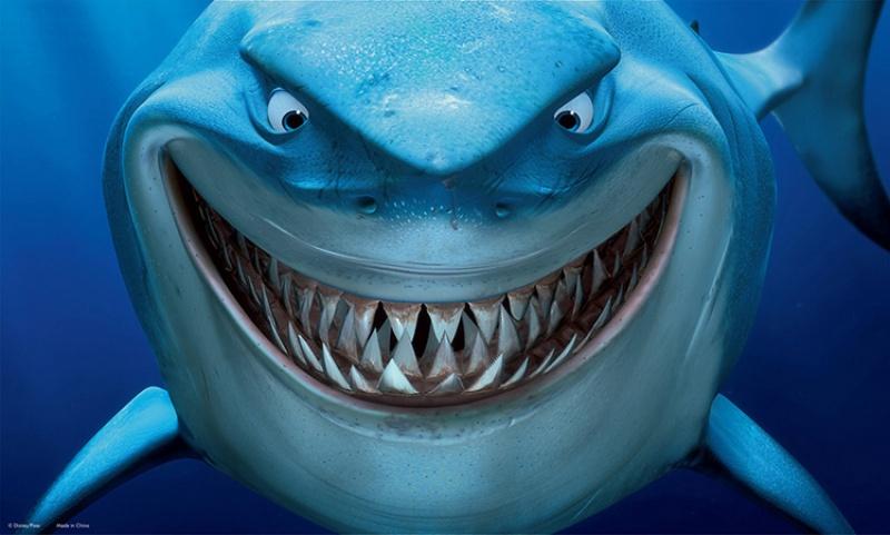 Image finding nemo shark aquarium - Aquarium nemo ...