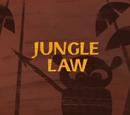 Закон джунглей