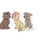 Light of their lives: SagexSummer puppies