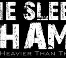 The Sleeping Shaman