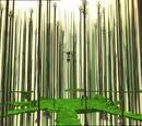 Replică pădurii