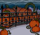 Giant Pumpkin Background