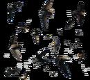 Apodidae