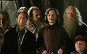 Albus Dumbledore w Zakonie