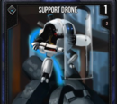 Support Drone