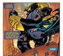 Convergence: Batgirl (2)