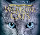 Warrior Cats – Der geheime Blick