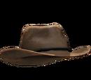 Kowbojski kapelusz - pliki