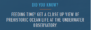 Did you know Underwater Observatory.png