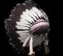 Indiański pióropusz - pliki