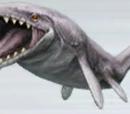 Hainosaurus