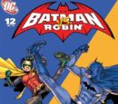 Batman and Robin Vol.1 12