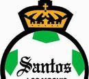 Santos Los Mochis