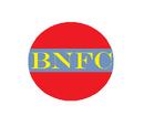 Berlonia's National Football Company