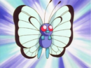 Ash Butterfree.png