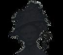 Lady Boyle