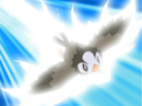 Ash Starly Quick Attack.png