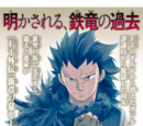 Fairy Tail Gaiden: Rhodonite/Image Gallery