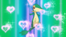 Ash Snivy Attract.png