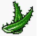 Aloe (SA).png