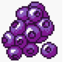 Blueberry (SA).png
