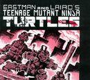 Teenage Mutant Ninja Turtles nr 1 (Mirage)
