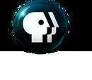 PBS/Logo Variations
