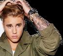 Bieberpedia