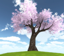 Confession Tree